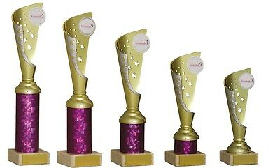 Gold/Pink Modern Cups 5 sizes Trophies Dance Achievement Cups FREE Engraving