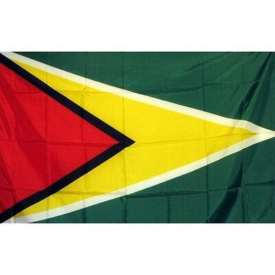 Guyana 3 x 5' Banner National Flag 90cm x 150cm