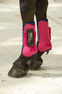 Norton Pro Tendon and Fetlock Boots Set