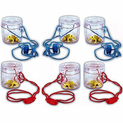 6 Mini Insect Bug Viewers with Toy Frogs - Ideal Spring Summer Children's Toys