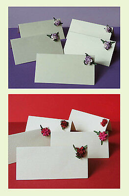 Flower decoration Packs of 10 Ivory Wedding place name cards 2 choices.Value!