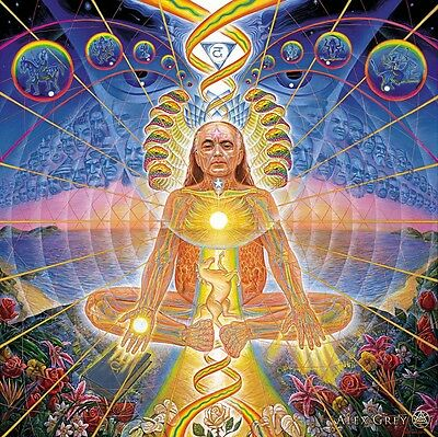 "Alex Grey Art Silk Cloth Poster 13 x13"" Decor 08"