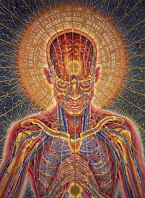 "Alex Grey Art Silk Cloth Poster 32 x 24"" Decor 03"