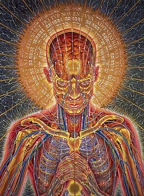 "Alex Grey Art Silk Cloth Poster 17 x13"" Decor 03"