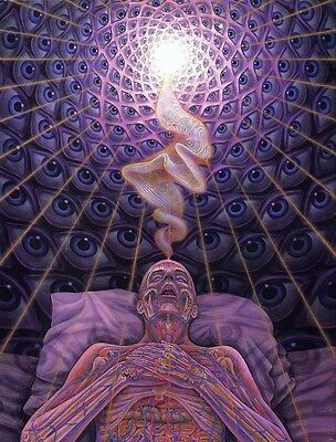 "Alex Grey Art Silk Cloth Poster 32 x 24"" Decor 13"