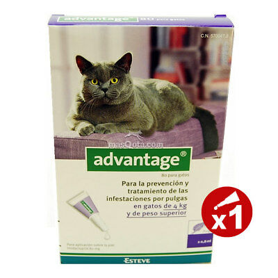 Advantage 80 Chats (Avec Plus De 4Kg) - Antiparasite - 1 Pipette