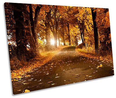 Autumn Orange Forest Trees SINGLE CANVAS WALL ART Print Picture