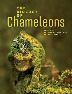The Biology of Chameleons by Krystal Tolley Hardcover Book (English)