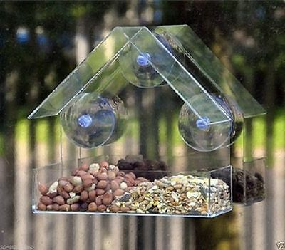 Kingfisher Clear Plastic Window Bird Feeder Suction Fit to Glass