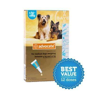 Advocate for Medium Dogs 4-10kg 12 Pack for fleas, heartworm and worms