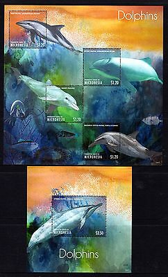 Micronesia 2013 Dolphins 2 Sheetlets 4 + 2 M/S's MNH