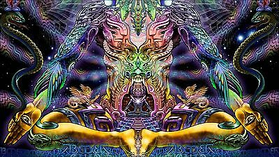 "Psychedelic Trippy Art Silk Cloth Poster 43 x 24"" Decor 74"
