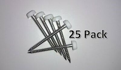 25 x 40mm White Polytop Plastic Headed Pins Poly Top - Stainless Steel