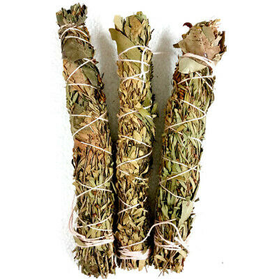 Native Smudge Stick TRUST with Tree Fern Incense Spiritual House Cleansing Sage