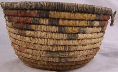 """Antique HOPI NATIVE AMERICAN INDIAN Coil Basket with Horses 7.25"""" x 4.25"""" c 1900"""