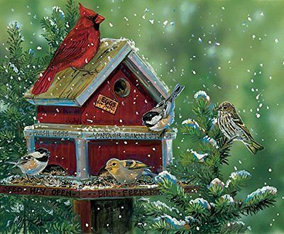 Bird Feed Store 550 Piece Jigsaw Puzzle by SunsOut