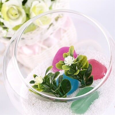 Home Deco Hydroponic Aquarium Fish Glass Vase Tank Plant Container Terrarium KS