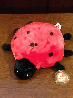 Retired Ty Beanie Buddy Lucky The Ladybug  Mint With Tags