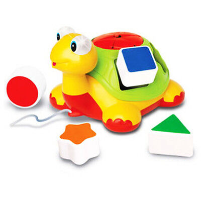 TURTLE SHAPE SORTER Pull Along Baby ActivityToy MUSIC LIGHTS & SOUNDS kiddicare