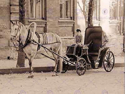 Vintage Photo Old Antique Horse Carriage Driver Trap Retro Poster Print Bmp11074
