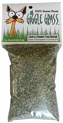 GIGGLE GRASS 100% ORGANIC CATNIP 1 1/2oz BAG **MADE IN CANADA**