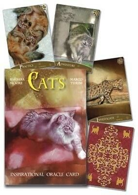 Cats Inspirational Oracle Cards by Barbara Moore (English)