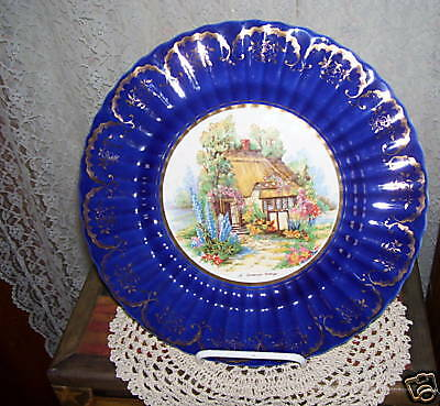 Large Antique Cottage Plate with Cobalt Blue Rim Wade England Ten inches