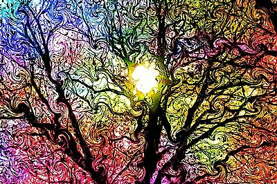 "Psychedelic Trippy Art Silk Cloth Poster 20 x 13""  Decor 77"