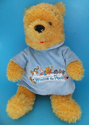 Disneyland Walt Disney World Winnie The Pooh Plush Figure In Blue T Jumper 13""