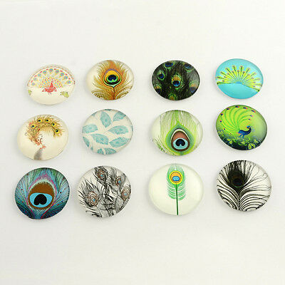 25mm Peacock Feather Printed Domed Glass Cabochons, Mixed Colour x 10 pcs