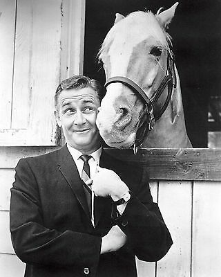 """ZY-111 8X10 PUBLICITY PHOTO ALAN YOUNG AND /""""MISTER ED/"""" CBS TV SHOW"""