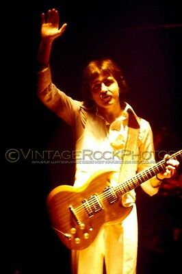 Buck Dharma, Blue Oyster Cult Photo 8x12 or 8x10 in 1978 San Diego CA Concert 23