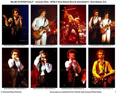 Blue Oyster Cult Photos Set of 38 4x6 inch Pro Prints 1978 San Diego CA Concert