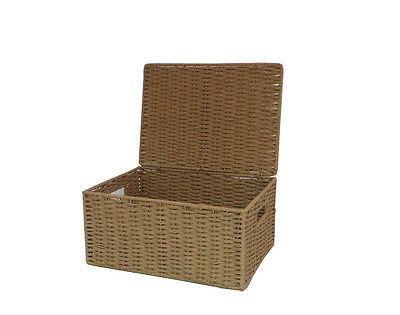 Natural large Paper Rope Storage Baskets Boxes Hampers with Lids WB-9694L
