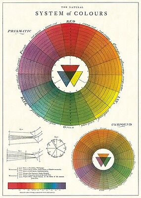 Cavallini Colour Wheel Flat Wrap