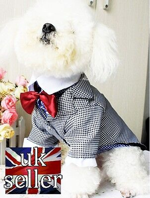 Smart Coat / Jacket With Red Bow Tie For Dogs