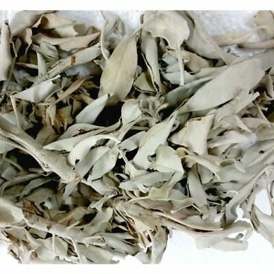 Loose White Sage - 250 grams - Smudging House Clearing Ritual Herbal Sage Saging