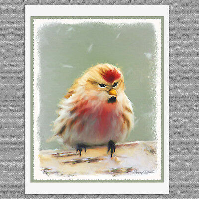 6 Common Redpoll Wild Bird Blank Art Note Greeting Cards
