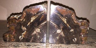 "Large 7.0 Lbs. Petrified Wood Bookends 9"" wide 4.25"" tall 3"" thick Fossil? L@@k"