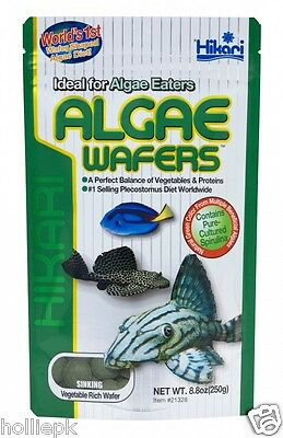 Hikari Algae Wafers Sinking Food For Plec Catfish Bottom Feeders Marine