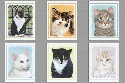 6 Assorted Kitten Cat Blank Note Greeting Cards