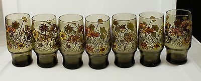 Lot of 7 Amber Water Tumblers Glasses With a Flower Design Poppies Daisies