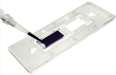 Bulldog Bio Hemocytometer, C-Chip, Disposable, 50/Pack #FL3030