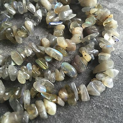 "Labradorite 5-9mm beads / chips. 35"" strand (approx 300+ pcs) SP240"