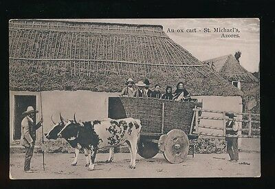 Azores ST MICHAEL'S An Ox Cart & locals in farmyard c1900/20s? PPC