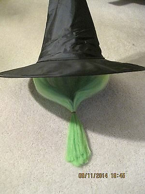 NEW Halloween Party Trick orTreat Black Witch Hat w/ Green Hair Wig sewn in NWT