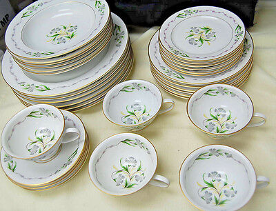Fantasia by Rosenthal - 35 Pieces - Service for 5+, Gray Green Flowers [M4200]