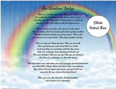 Pet Memorial Personalized Poem The Rainbow Bridge For Loss Of Dog