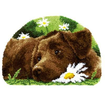Vervaco Latch Hook Chocolate Labrador Rug Home Decoration Needlecrafts Kits