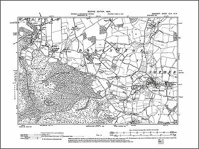 Nether Stower, Holford, Dodington, old map Somerset 1904: 49NW repro